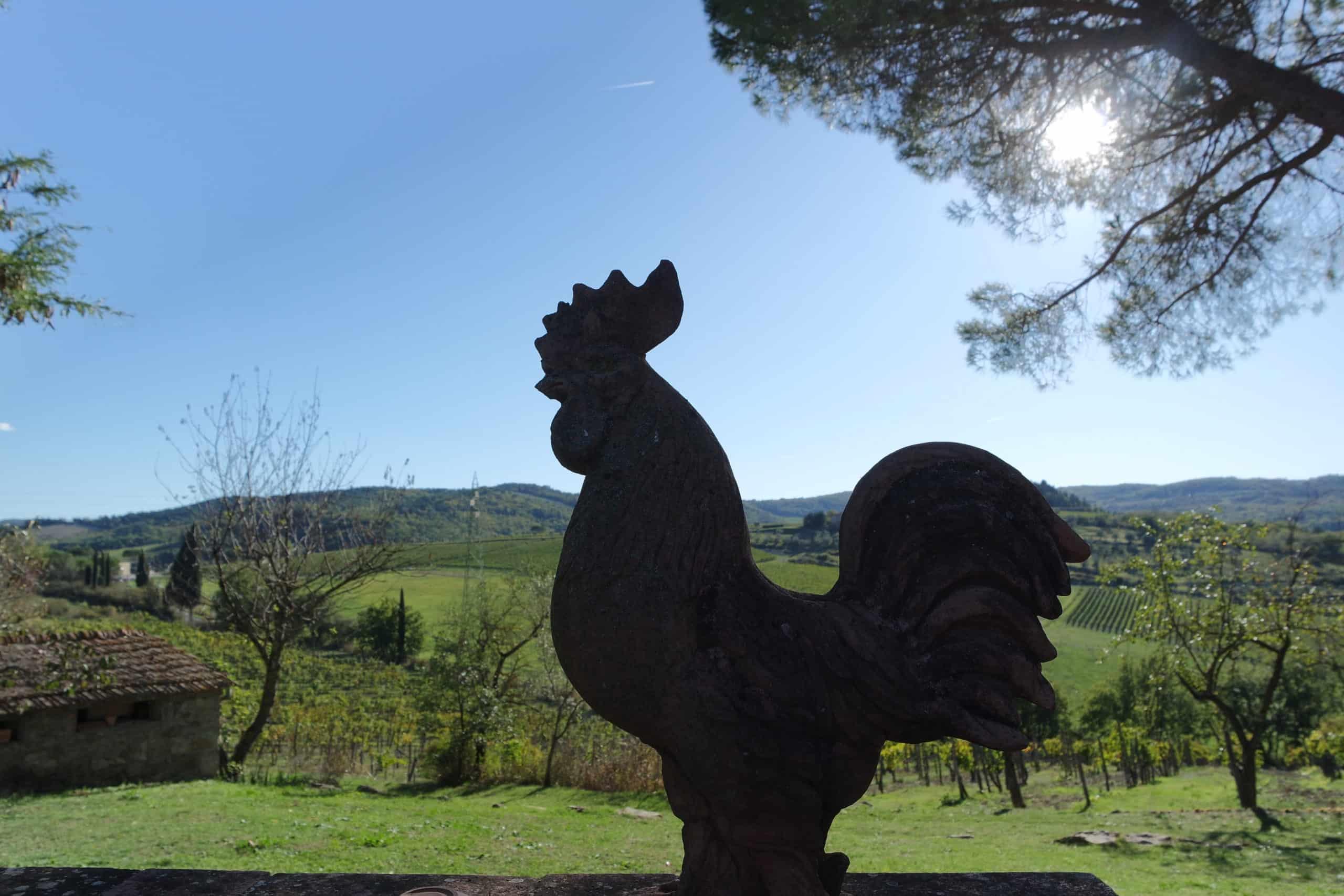 El Chianti y la Val d'Orcia: Visitas enogastronómicas en Toscana