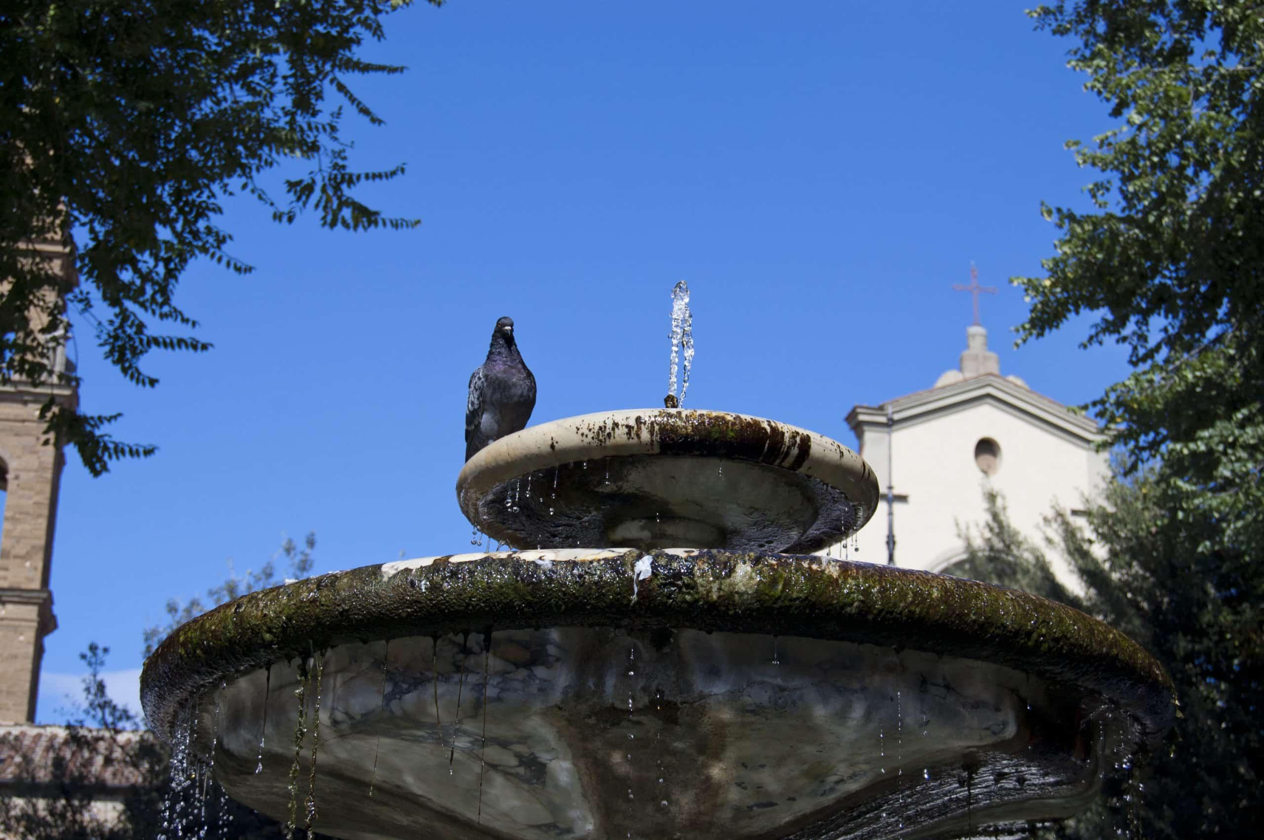 Visita Guiada no Oltrarno, seus ateliês e artesãos